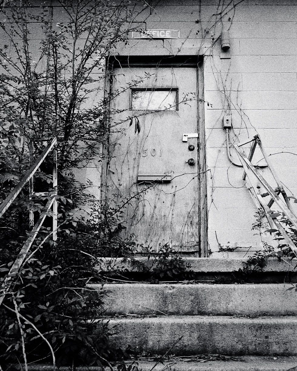 The vine-covered entrance to an abandoned warehouse