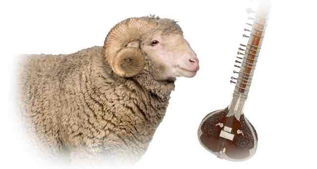 a ram and a sitar